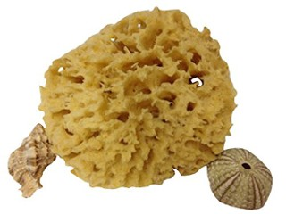 Mother Ocean Naturals Wool Sea Sponge